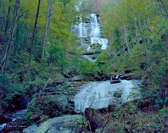 Amicalola Falls (Mark Sinderson) Tags: 4x5 amicalolafalls amicalolafallsstatepark camerabodies chamonix045f1 fall film ga georgia kodakektar100 largeformat4x5 lenses locations nikkorw135mmf56 northamerica seasons states us usa unitedstates waterfall waterscape