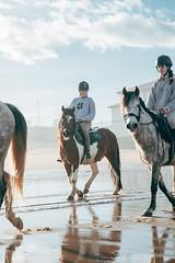 Paseos por la playa (Haydé Negro) Tags: haydé haydénegro haydenegro haydenegrocom nikond610 nikon d610 playa caballos caballo paseo gorliz luz arena cielo agua naturaleza salvaje actividad deporte sb