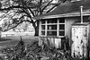 Stark Life (Scott Sanford Photography) Tags: 6d abandoned canon ef2470f28l eos naturallight outdoor texas topazlabs weathered forgotten historic moody blackandwhite bw monochrome