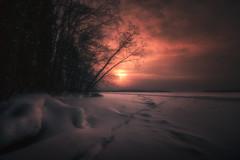 Lammassaari (petrisalonen) Tags: winter nature finland snow red sun sunshine trees imatra clouds sky light yellow canon6d canonef1635mmf4lisusm