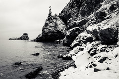 a little split (Port View) Tags: fujixe3 novascotia canada cans2s 2018 winter littlesplitrock coast fundy fundyshore scotsbay shore beach rock rocky snow fresh tide tidal high blackandwhite bw monochrome mono morning