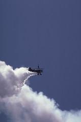 Wing Walker.jpg (TFB777) Tags: air california bayarea aviation transportation biplane