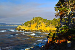 IMG_3501 (CornellBurgessphotography) Tags: seascapes bigsur pointlobos carmelbay california pacificocean montereybay cornellburgess