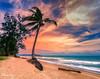 Phuket (MNmagic) Tags: thailand sony sea sunset palm phuket publicdomain love flickr flickraward explorer