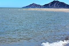 High tide (thomasgorman1) Tags: tide seascape sandbar wave birds seagulls mexico nikon baja shore beach sea cortez view scenic sand