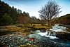 Hayedo de Tejera Negra (www.jorgelazaro.es) Tags: agua tejeranegra arroyo bosque cascada hayedo corriente seda invierno rio cantalojas castillalamancha españa es