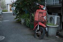 never wake up (kasa51) Tags: scooter allrey pottedplant outdoorunit tokyo japan abandoned ruined rusty