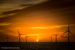 When the sun sets (Askjell) Tags: belgium blighbank maritime northsea ocean offshore sea ships vessel windturbine windmill windpower
