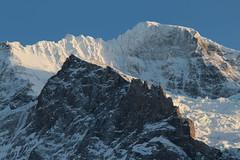 Wengen Jungfrau ( BE VS - 4'089 m - Erstbesteigung .... - Viertausender - Berg montagne montagna mountain ) in den Berner Alpen - Alps im Berner Oberland im Kanton Bern und Wallis - Valais der Schweiz (chrchr_75) Tags: hurni christoph chrchr75 chriguhurni februar 2018 schweiz suisse switzerland svizzera suissa swiss albumzzz201802februar albumgletscherimkantonbern gletscher glacier ghiacciaio 氷河 gletsjer alpen alps kantonbern berner oberland