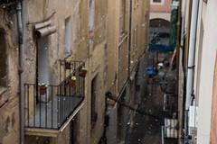 Neva a Tarragona (rfabregatmoliner) Tags: snow neu nieve tarragona costa catalunya catalonia