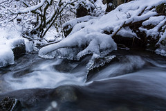 Ice stream (Aherzog81) Tags: a6000 sony water river ice long exposure