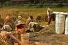 IMG_0465 (Kalina1966) Tags: bali island indonesia people rice field