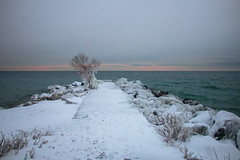 Snowy Pier (A Great Capture) Tags: water lake ontario pier tree frozen rocks ice overcast sun rc harris treatment plant snow canon eos 70d agreatcapture agc wwwagreatcapturecom adjm ash2276 ashleylduffus ald mobilejay jamesmitchell toronto on canada canadian photographer northamerica torontoexplore winter l'hiver r c cold weather digital dslr lens natur nature naturaleza natura naturephotography naturethroughthelens sky himmel ciel waterscape wet agua eau outdoor outdoors