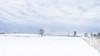 February 3 (Paul Kahne) Tags: shelsburg springs snow