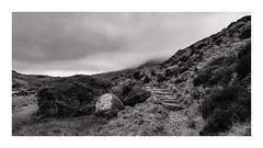 The Disappearing Path..(part 2) (mandysp8) Tags: path mist winter wales nationalpark uk snowdonia heather rocks bw blackandwhite