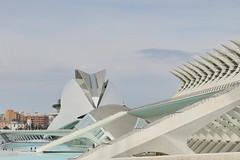 Un edificio con espinas (Micheo) Tags: spain españa valencia ciudaddelascienciasylasartes calatrava arquitectura arquitecto architecture