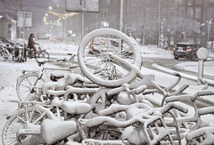 White bikes (B℮n) Tags: holland netherlands nederland bike snow covered bikes bicycle canals winter cold street anne dutch people scooter gezellig cafés snowy snowfall atmosphere colorful walk walking cozy light corner water canal weather cool sunset celcius mokum grachtengordel unesco world heritage sled sleding slee seagull nowandthen meeuw bycicle 1°c sun sneeuw brug slippery glad flakes handheld wind amsterdam colours colors jordaan linden boom tree iep elm hugodegrootplein tweedehugodegrootstraat fietsen besneeuwde 50faves topf50 100faves topf100 200faves topf200
