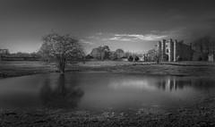 Flooded Field near Thornton Abbey Lincolnshire UK- (Allan A Albery) Tags: landscapes thorntonabbey sonya7ii sony2470mmf4 lightroom