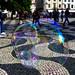 Bubbles (41/365)
