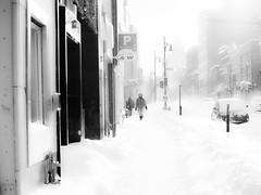 ah! comme la neige a neigé (photosgabrielle) Tags: photosgabrielle blackwhite streetphotography noirblanc hiver snow winter neige montreal urban ville city urbain