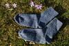 Blue socks (III) (dididumm) Tags: sunshine spring flowers crocus violet purple socks blue wool knit knitting handcraft selfmade handarbeit stricken wolle stricksocken socken blau lila krokus blumen frühling sonnenschein