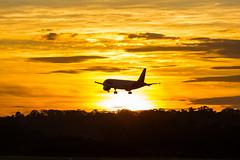 GRU_Sunrise (Edu_Perez) Tags: sbgr avião aeroporto aeronave airport aircraft airlines brasil brazil beautifull eduardo guarulhos gru hour sky landing planespotting plane planes spotting spotter são paulo perez sun sunrise tam airbus