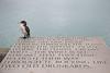 old drunkard (Paul J's) Tags: wellington lambtonharbour waterfront landscape coastal bird animal art shag