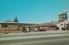 Vintage Postcard - Seal's Motel - Seattle, WA (hmdavid) Tags: vintage postcard seals motel seattle washington neon seal sign roadside advertising midcentury 1950s