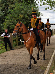 The Royal Horse Artillery Ride In (meniscuslens) Tags: royal horse artillery horses hounds heroes trust charity show military soldier uniform buckinghamshire aylesbury princes risborough high wycombe