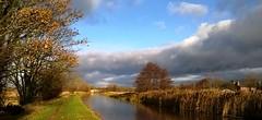 West Lancs scene (White Pass1) Tags: canal halsall westlancashire cut towpath leedsliverpoolcanal clouds trees landscape bridge stonecanalbridge reeds