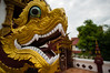 Dragon Head, Thailand (Mich's Pictures) Tags: thailand chiang mai old city wat monthian temple macro