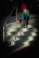 Techart adapter + Voigtlander 35mm f1.2ll @ f2 (Stevenchen912) Tags: streetphoto streetcandid streetfavorites streetphotographer urbanlife urban candid cadid color dreamy geometry geo composition contrast shadow