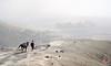 The lone ranger (Benisius Anu) Tags: bromo tengger sand horse cowboy temple eastjava seaofsand haze