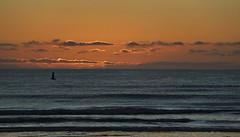 Sunrise..... (flying-leap) Tags: newzealand canon canon60d 60d northcanterbury nz southisland birds sunrise beach landscape seascape cloudsstormssunsetssunrises clouds waikukubeach coastline sea sky ocean bay