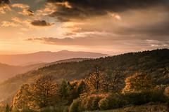 Golden light - Beskidy mountains (pawelrajtor) Tags: mountains sunset goldenlight landscape landscapephotography gory beskidy poland mood travel mountainview artphotography awsomepix