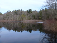 Mill Pond (allanwenchung) Tags: waterbodies mansfield