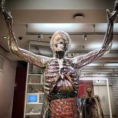 The weird and wonderful world of the Wellcome collection (Flamenco Sun) Tags: model anatomy medical odd bizarre weird