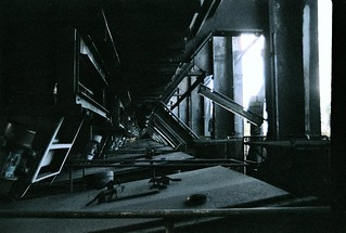 Desolate Shadows