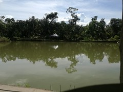 IMG_20180111_143553 (chocoenlaweb.com) Tags: chocó chocoenlaweb quibdó turismo colombia pacífico tutunendo naturaleza bahíasolano nuquí saldefrutas cascada ichó