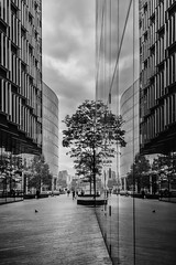 The Last Ones Belong In A Zoo - London City Life (New Version) by Simon & His Camera (Simon & His Camera) Tags: reflection office glass mirror city urban london architecture autumn building contrast simonandhiscamera silhouette composition lines light nature outdoor people passage window trees bw blackandwhite iconic monochrome sky
