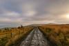 _DSC0017 - Lancashire moorland... (SWJuk) Tags: swjuk uk unitedkingdom gb britain england lancashire burnley home crownpoint moors moorland road grasses fence mud vanishingpoint clouds cloudy hills hillside 2018 jan2018 winter nikon d7100 nikond7100 18300mm rawnef lightroomclassiccc landscape