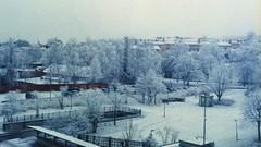 < winter on expired film > (Mister.Marken) Tags: citypark park winter snow södertälje nikonf4 digibasec41 madeinsweden kodakcolorfilm mybestshots2018