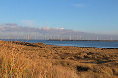 South Gare and wind farm from North Gare, Teesmouth (martin97uk) Tags: seaton carew hartlepool tees county durham england uk sea