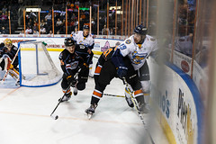 "Kansas City Mavericks vs. Toledo Walleye, January 19, 2018, Silverstein Eye Centers Arena, Independence, Missouri.  Photo: © John Howe / Howe Creative Photography, all rights reserved 2018. • <a style=""font-size:0.8em;"" href=""http://www.flickr.com/photos/134016632@N02/25965928988/"" target=""_blank"">View on Flickr</a>"