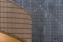 hk space museum abstract (Greg Rohan) Tags: hongkongspacemuseum spacemuseum tiles wall asia china hongkong hk d7200 2017 nikkor nikon abstract lines pattern grey orange