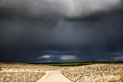 Grand Crohot (Elodie Trillot) Tags: grand crohot chemin contraste canon eos 5dmk2 plage aquitaine gironde capferret