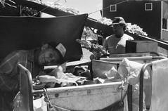 ontario tobacco harvest (cpt. willard) Tags: 1988 canada burford brantford ontario lakeerie tobacco harvest priminggang kiln tablegirls summer fluecuredtobacco ocanada bunkhouse ontarioyourstodiscover farmer