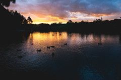 Sunset at McLaren Falls Park (craigmdennis) Tags: newzealand sunset water landscape