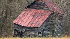 almost (Hayseed52) Tags: barn leaning dilapidated abandoned structure tinroof redroof countryside