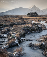 Rannoch Moor - The Last Stand (.Brian Kerr Photography.) Tags: rannochmoor scotland visitscotland formatthitech firecrest landscapephotography trees briankerrphotography sony winter frozen landscape